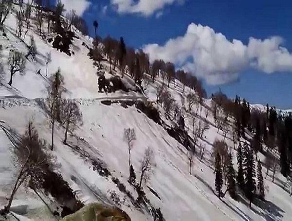Sinthan-Top-Green-Kashmir-Travels